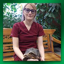 Boulders Natural Animal Hospital Staff