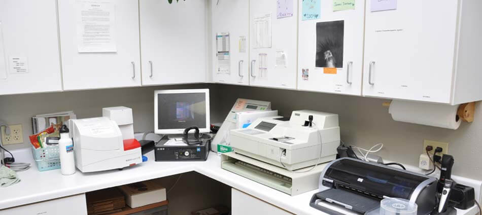 laboratory at Boulder Natural Animal Hospital