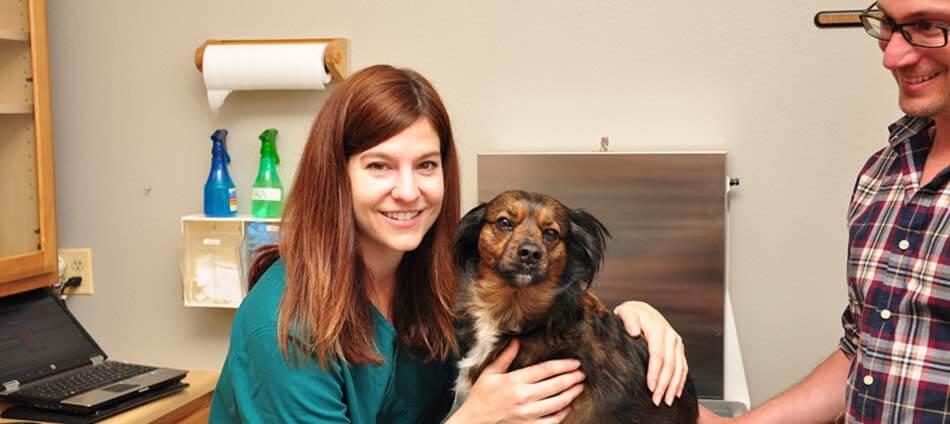 Animal Hospital in Bolder CO